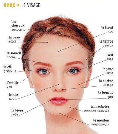 лицо по-французски