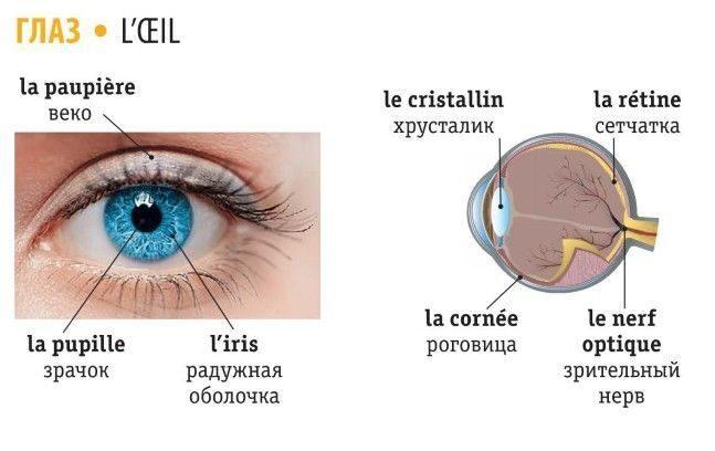 глаза по французски